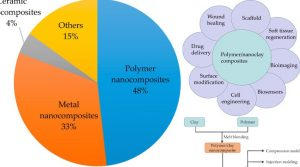 A Review of the Synthesis and Applications of Polymer–Nanoclay Composites