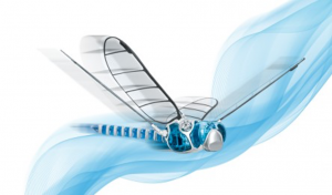 Figure 5 - dragonfly bionic learning network